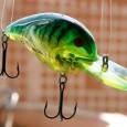 El pez artificial es uno de los principales señuelos para capturar peces con caña. Además, ha evolucionado mucho en los últimos años, pues hay que reconocer que los tiempos han […]