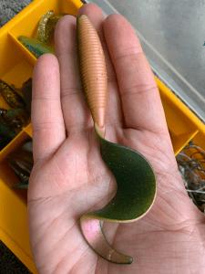 Marcianitos o Twister de este tamaño y color son letales con los lucios